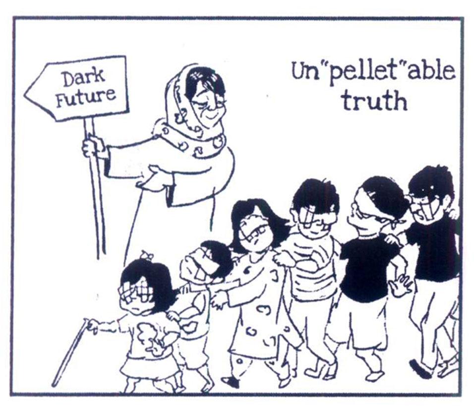 Kashmir nea cartoon 4